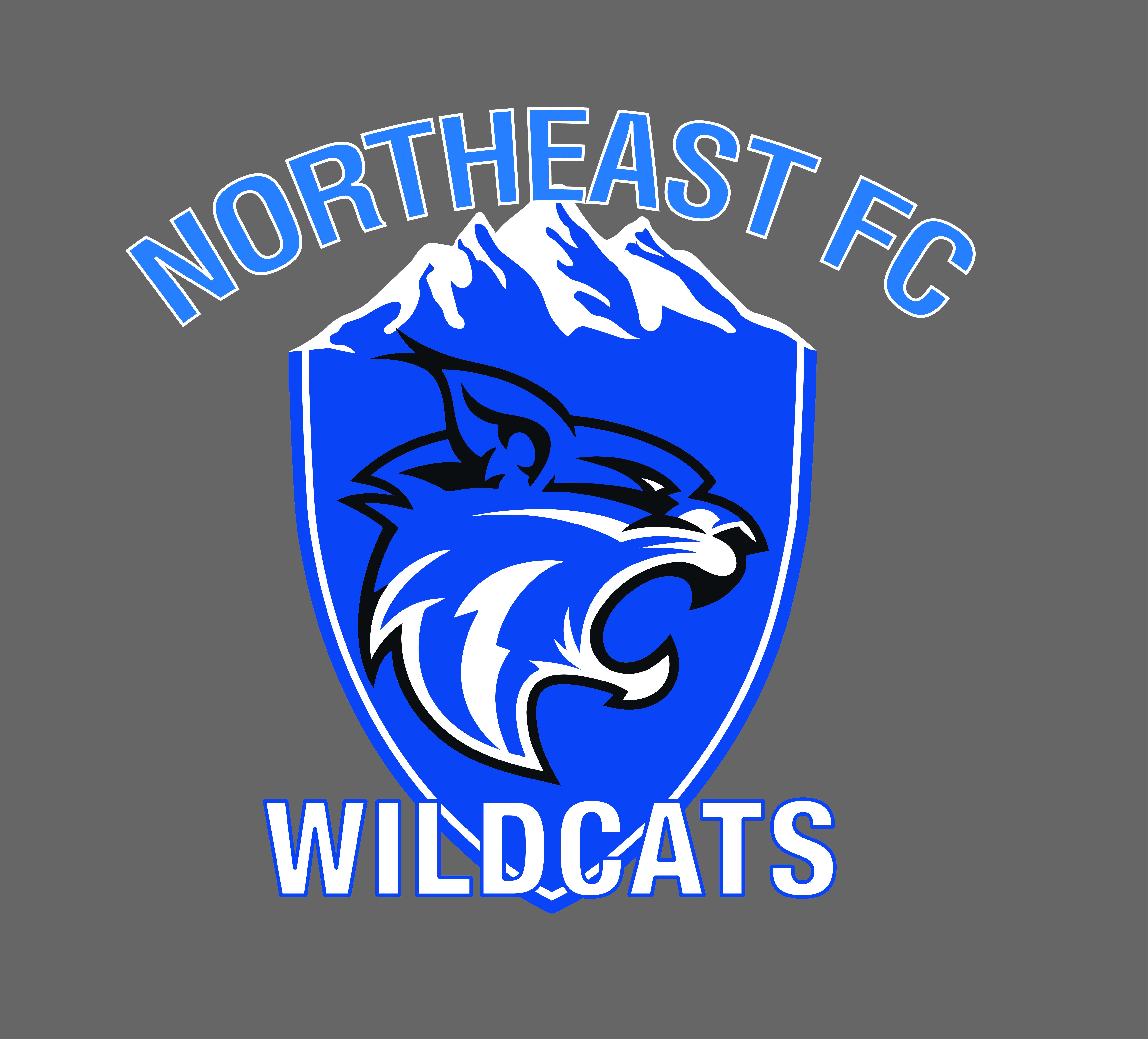 NEFC WILDCATS